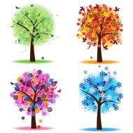 four seasons, set of colorful trees, drawing