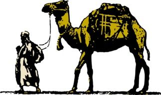 graphic image of a camel as a transport