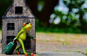 toy frog leaves home