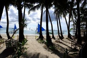 white beach with green palm trees in boracay