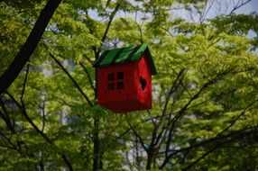 Colorful little house on tree in a park in asia