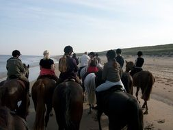 beach walk on horses