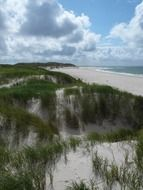 Sand dunes north sea