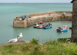 harbor in Cornwall