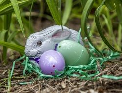 decorative bunny and colorful easter eggs in the grass
