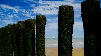 green posts on the beach