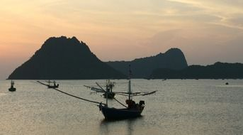boats in serene harbor in thailand