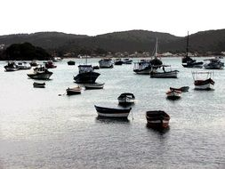 panoramic view of boats in litoral