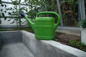 green watering can for watering