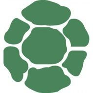 Ninja Turtle Shell Images At Pixy Org Rh Logo