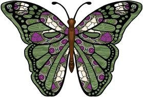 green butterfly with geometric patterns