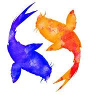 Colorful Koi Fishes clipart