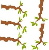 Clip Art Tree Branches Black And White Olive Branch clipart