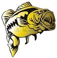 Yellow bass fish clipart