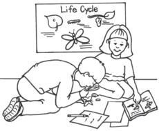 Kindergarten Science, coloring page, outline
