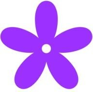 graphic purple flower on the white background