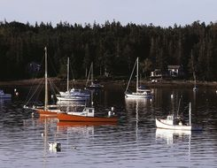 boats in the Southwest harbor