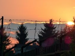 sunset through barbed wire