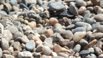 stones on the beach of different sizes