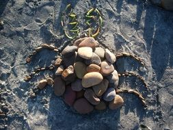 figure of a bug made of stones