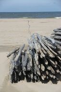 wooden posts with wire on the beach