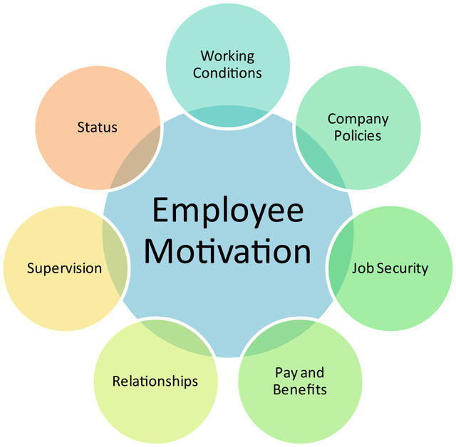 relationships between employees and employers The employee-organization relationship 2 abstract while there is a great deal of literature on the employee-organization relationship, we argue for a number of needed developments.
