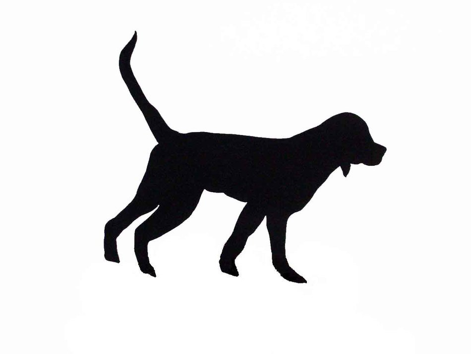 hunting dog, black silhouette