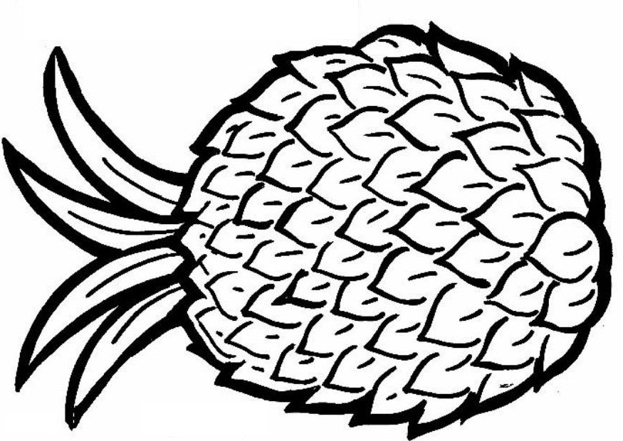 Pineapple Coloring Page Drawing Free Image