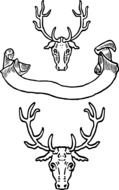 Vintage banner and deer heads, Black And White drawing