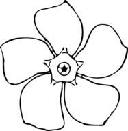 drawn periwinkle flower
