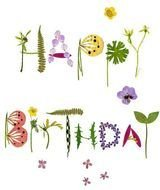 Colorful Happy Birthday clipart