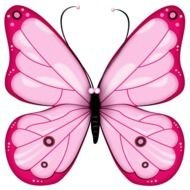 pink butterfly on a red background
