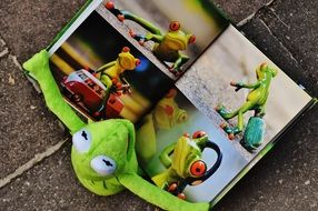 ceramic frog figure examines the photo album