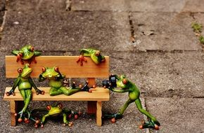 Frogs, Sociable, Bank, Bench