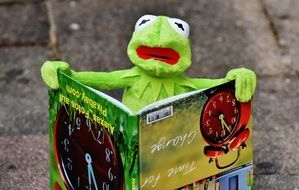 soft kermit reading book