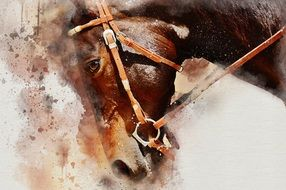 Brown Horse head, painting