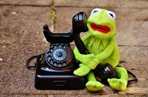 green frog holding a telephone receiver
