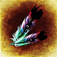 illustration of colorful feathers