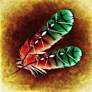 drawing of green red feathers
