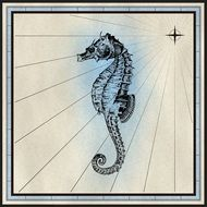 incredibly beautiful Seahorse drawing