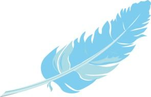 graphic image of a blue bird feather