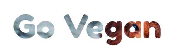 picture of the go Vegan Slogan