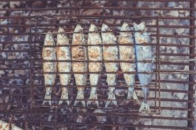 roasted Fish on grill