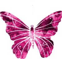 beatuful drawing of a butterfly
