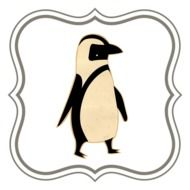 picture of a penguin in a frame