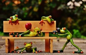 Frogs Relaxed