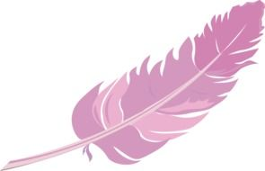 Spring Pink feather drawing