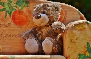 teddy bear on the sofa