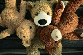 teddy bears of different colors