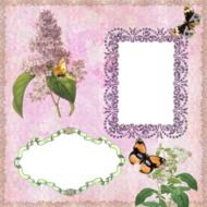 vintage card with the image of lilac and butterflies